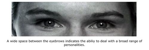 Wide space between brows