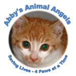 Abby's Animal Angels