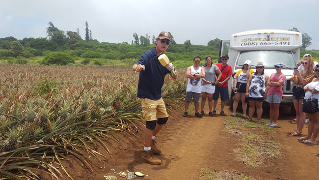 Maui Pineapple Company and Distillery Tour