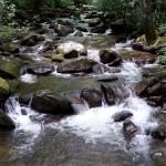 hiking 101 stream