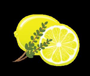 Lemon thyme salt scrub
